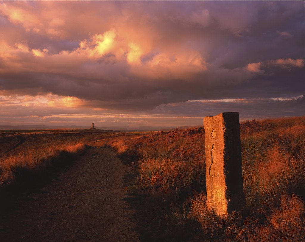 England, Lancashire, Darwen Moor. Stone marker posts used to show the way to Jubilee Tower on Darwen Moor.  The tower was built to celebrate both Queen Victoria's jubilee and the opening of the moor to public access. : Stock Photo