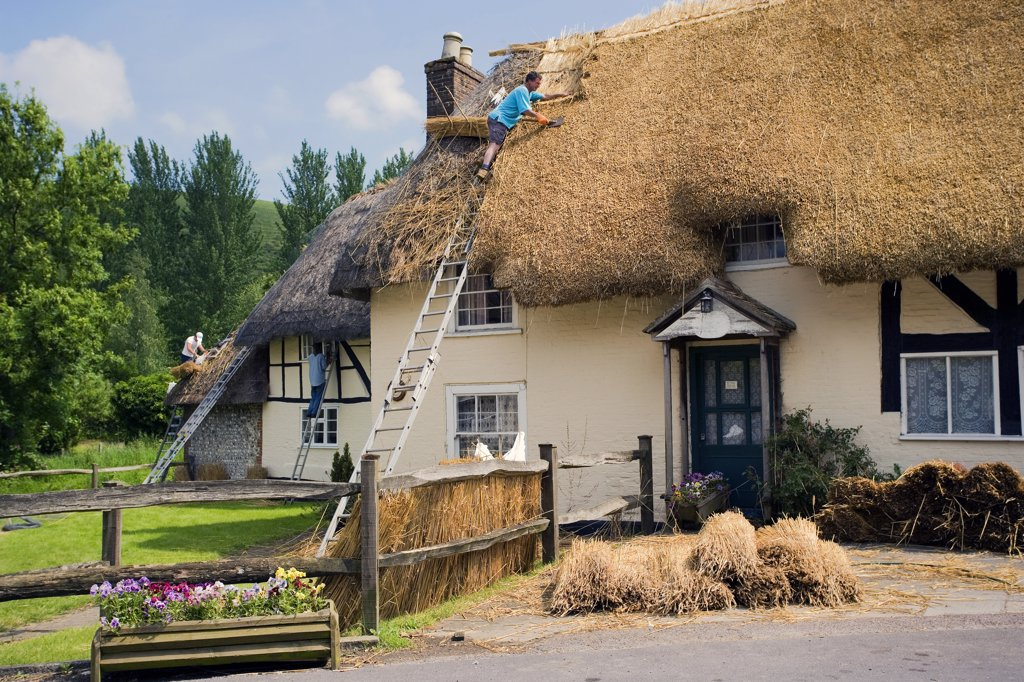 Stock Photo: 4282-21754 England, West Sussex, Midhurst. Work to replace a traditional thatched roof on a cottage.