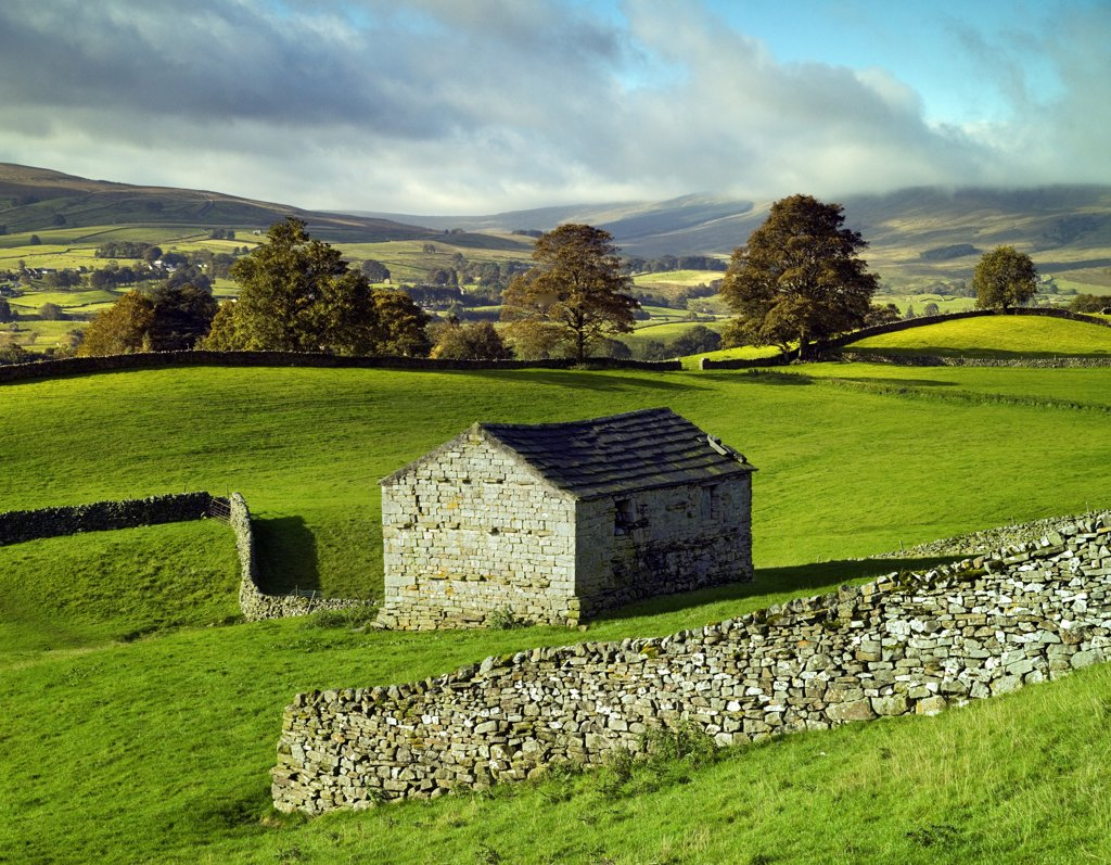 England, North Yorkshire, Hawes. A traditional stone barn and walls in Wensleydale in the Yorkshire Dales. : Stock Photo
