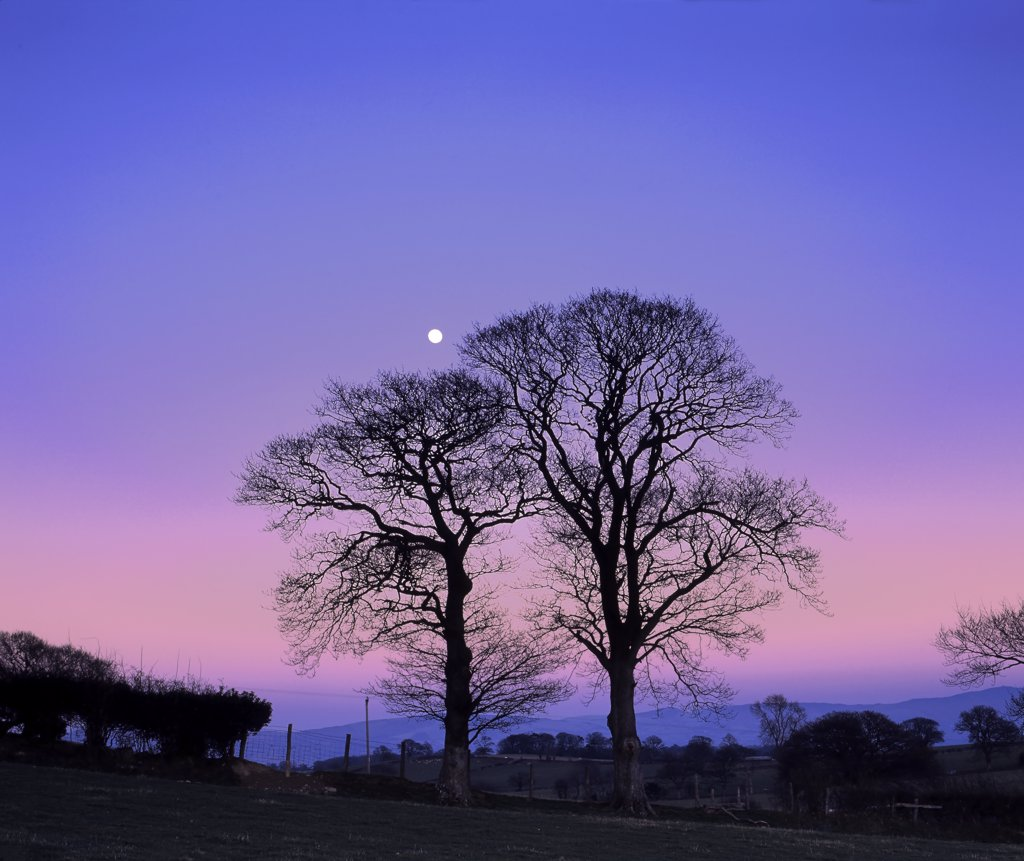 Stock Photo: 4282-21881 Wales, Denbighshire, Near Denbigh. Dusk descends as a full moon rises on a calm winter evening in rural North Wales.