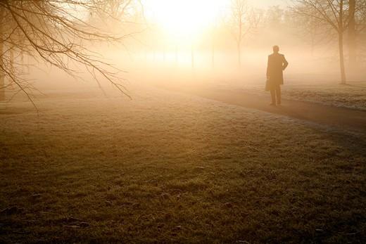 England, London, Kensington Gardens. A pedestrian walking through the mist in Kensington Gardens. : Stock Photo