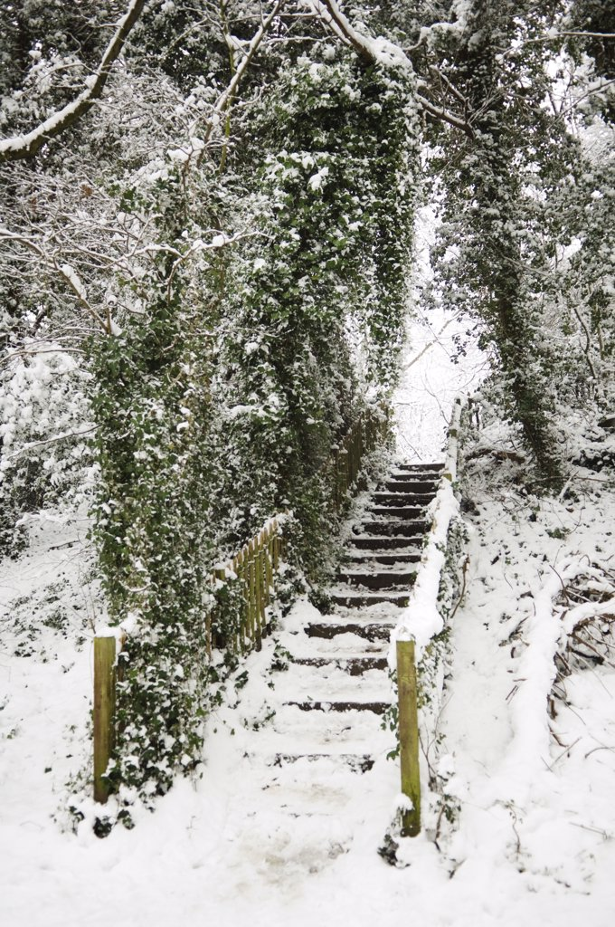 England, London, Highgate. Snow covered steps in Highgate Village. : Stock Photo