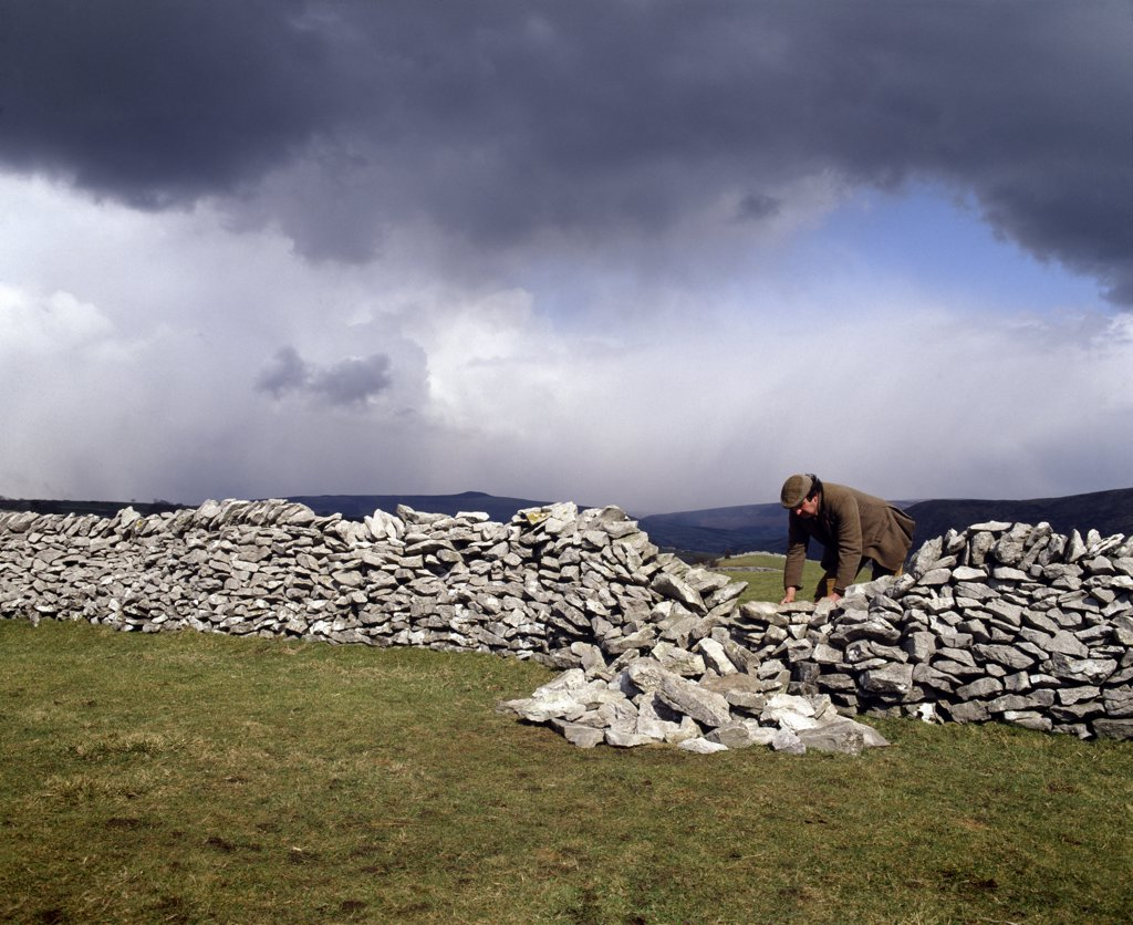 Stock Photo: 4282-27756 England, Derbyshire, Derbyshire. Dry stone waller fixing wall. Dry stone is a method to construct structures without mortar using the outer weight that pushes inward toward the wall core.