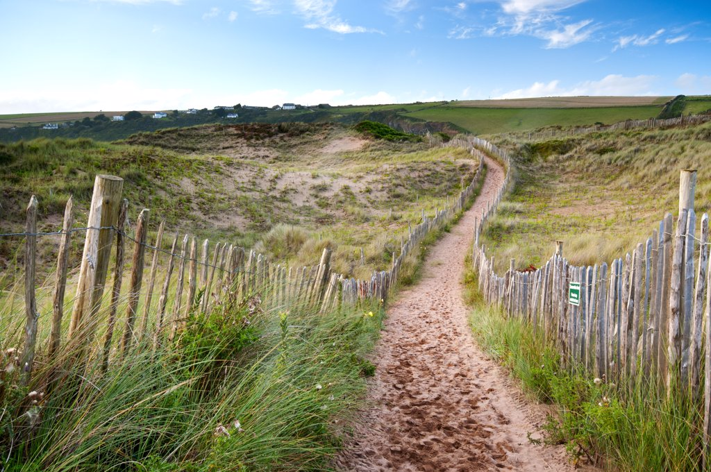 England, Devon, Bantham. Sandy pathway through the sand dunes at Bantham Beach. : Stock Photo