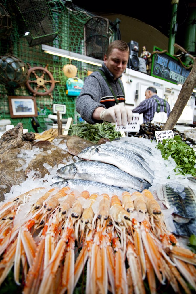 Stock Photo: 4282-29661 England, London, Borough. A fishmonger laying out fresh Tuna and shell fish for sale from a stall in Borough Market.