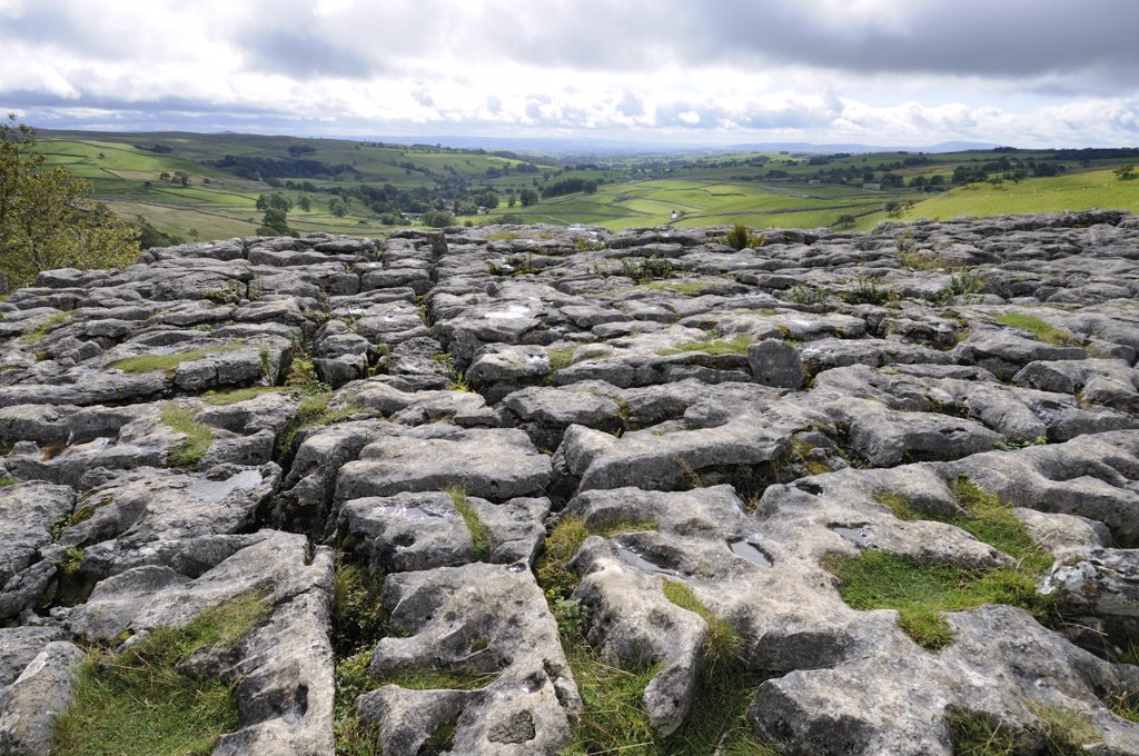 England, North Yorkshire, Malham Cove. Limestone Pavement above Malham cove, formed by glacial retreat from the last ice age. : Stock Photo
