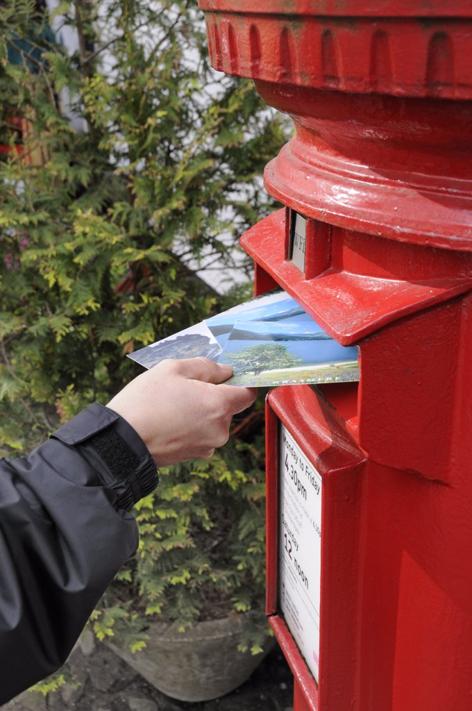 England, Cumbria, Kendal. Posting postcards into a traditional red letter box. : Stock Photo