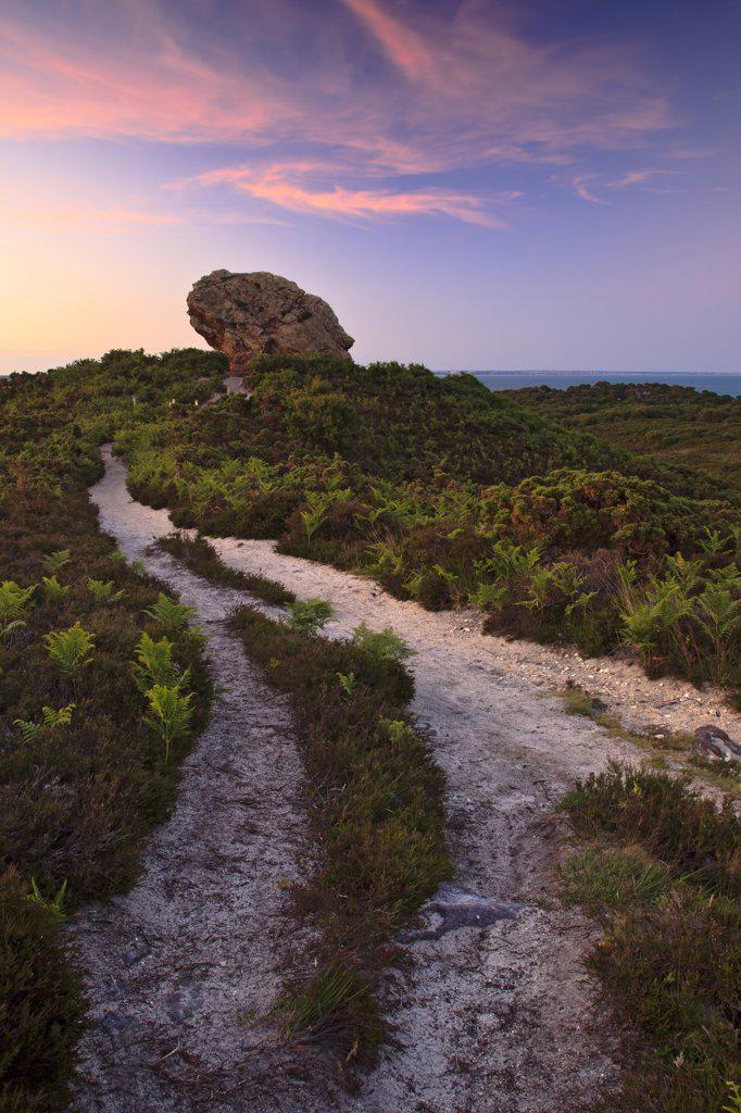 England, Dorset, Studland. Sunset at Agglestone Rock, a large sandstone rock on Studland Heath. : Stock Photo