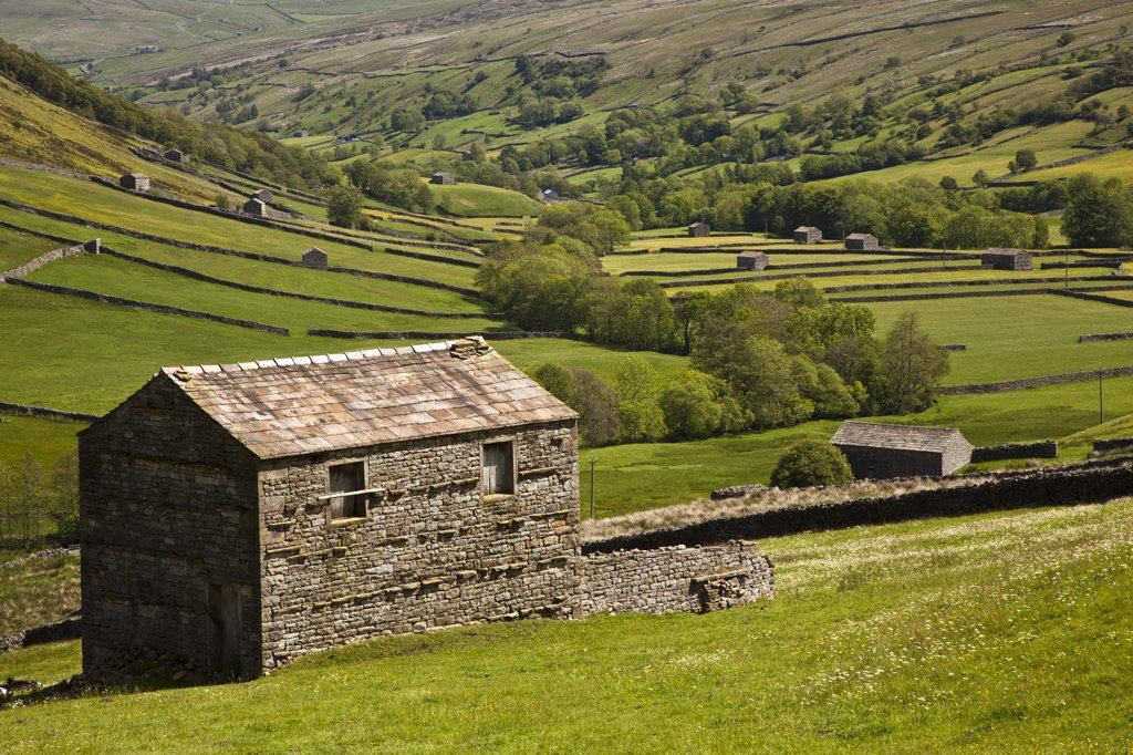 Stock Photo: 4282-30193 England, North Yorkshire, near Thwaite. Stone barns near Thwaite in Upper Swaledale in the Yorkshire Dales National Park.