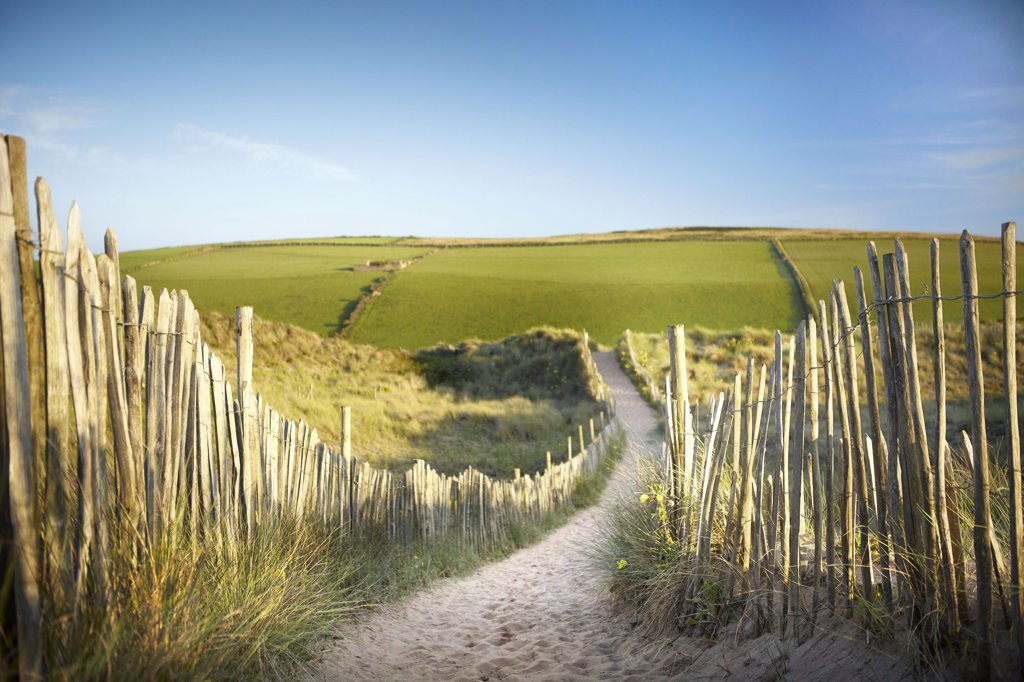 England, Devon, Bantham. A sandy path through the dunes at Bantham Beach. : Stock Photo