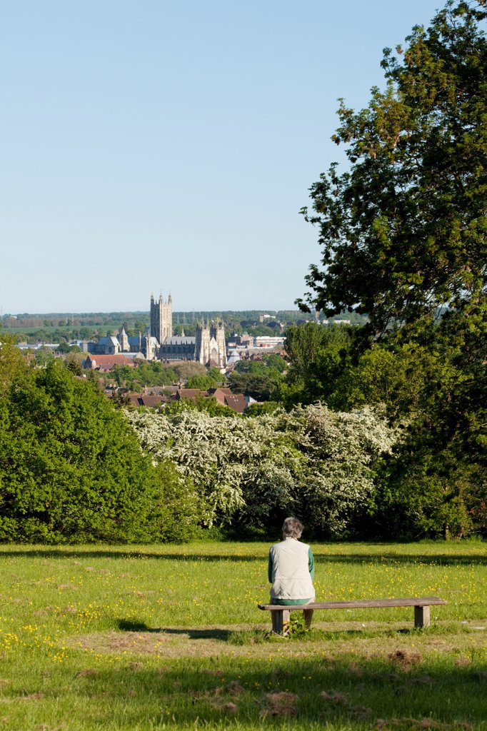 Stock Photo: 4282-30860 England, Kent, Canterbury. A man admires the view of Canterbury Cathedral.