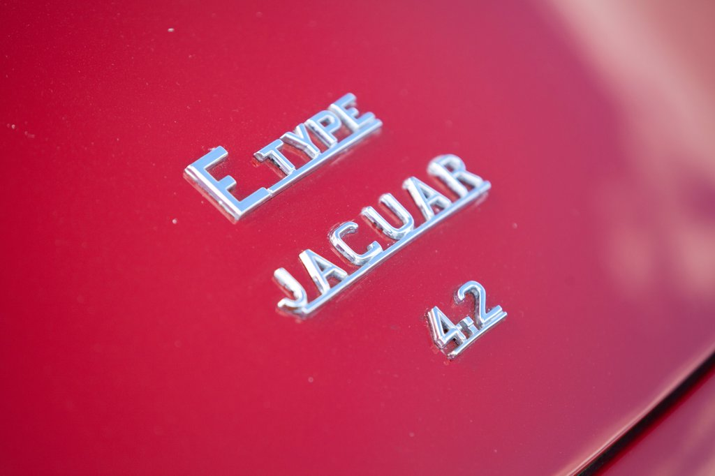 Stock Photo: 4282-30995 England, West Sussex, Goodwood. A close up view of a Jaguar E Type classic car at Goodwood revival.