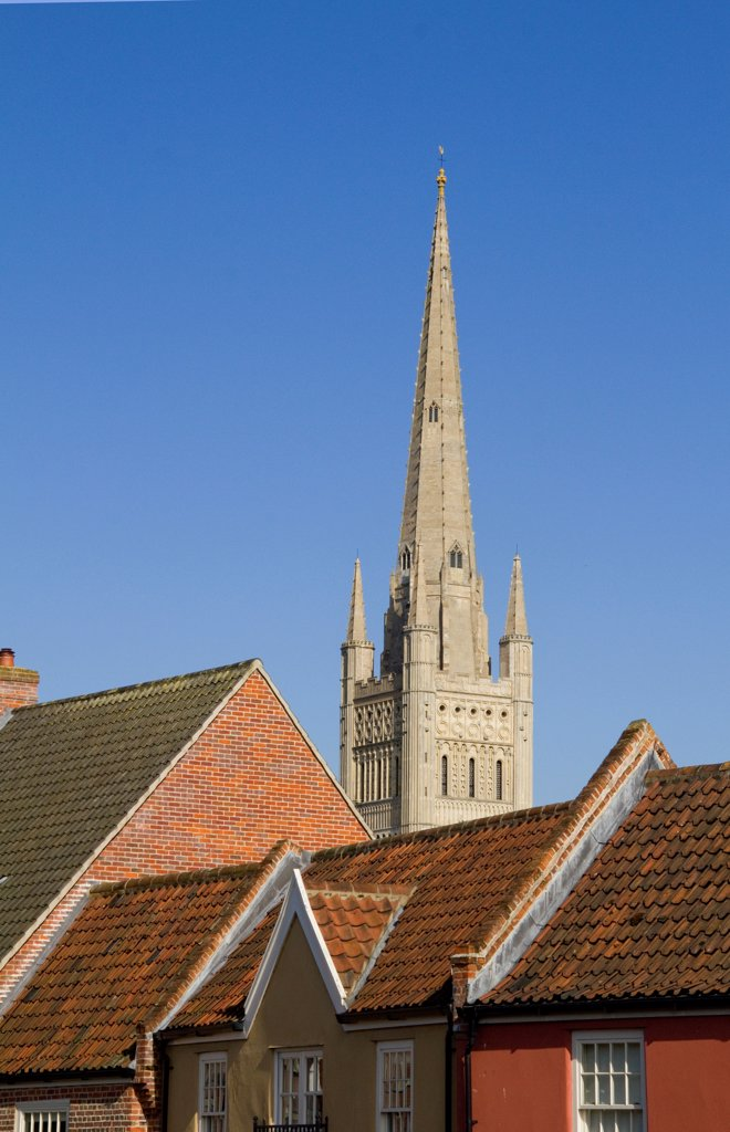 England, Norfolk, Norwich City. The spire of Norwich Cathedral soars above rooftops of houses. : Stock Photo