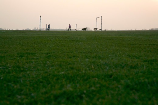 England, London, Wormwood Scrubs. Dog walkers on the football pitches on Wormwood Scrubs Park near Wormwood Scrubs. : Stock Photo