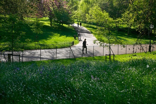 England, London, Hyde Park. Spring morning in the Dell in Hyde Park. : Stock Photo