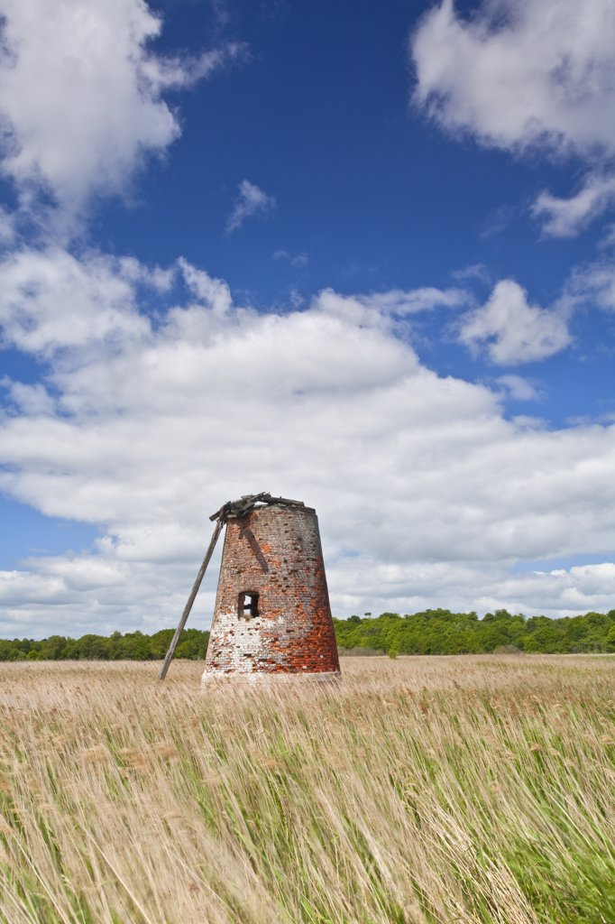 England, Suffolk, Walberswick. The derelict remains of Westwood Marshes Mill, a Grade II listed tower mill on the Suffolk Coast. The mill is one of only 2 remaining drainage mills on the east Suffolk marshes. : Stock Photo