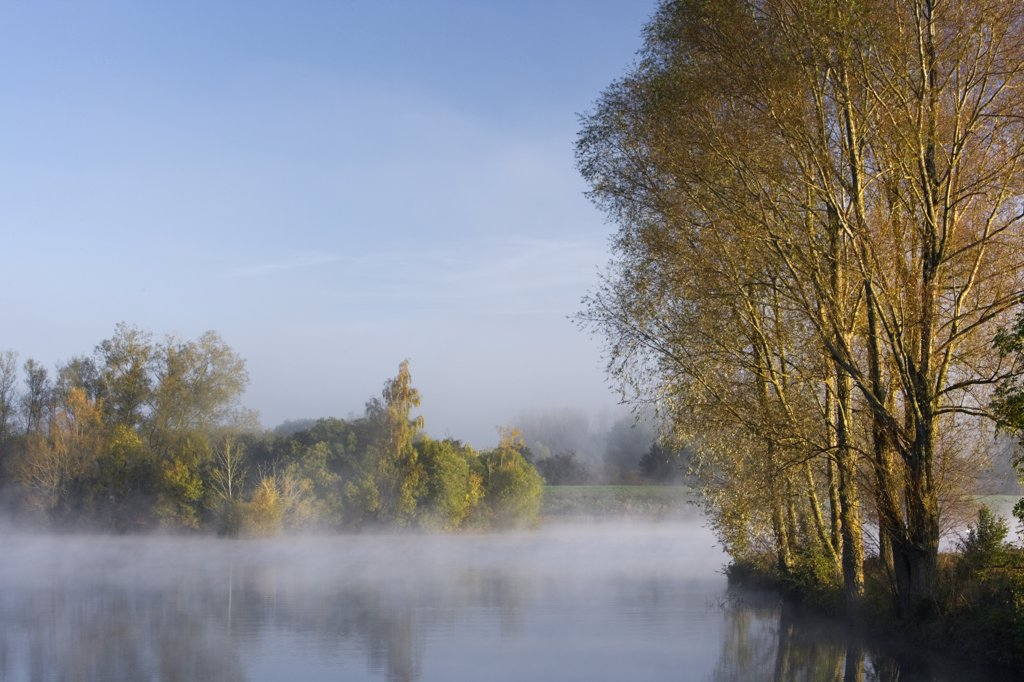 England, Wiltshire, Lower Moor Farm nature reserve. A misty autumnal dawn at Mallard Lake at the Wiltshire Wildlife Trust's new Lower Moor Farm nature reserve. : Stock Photo