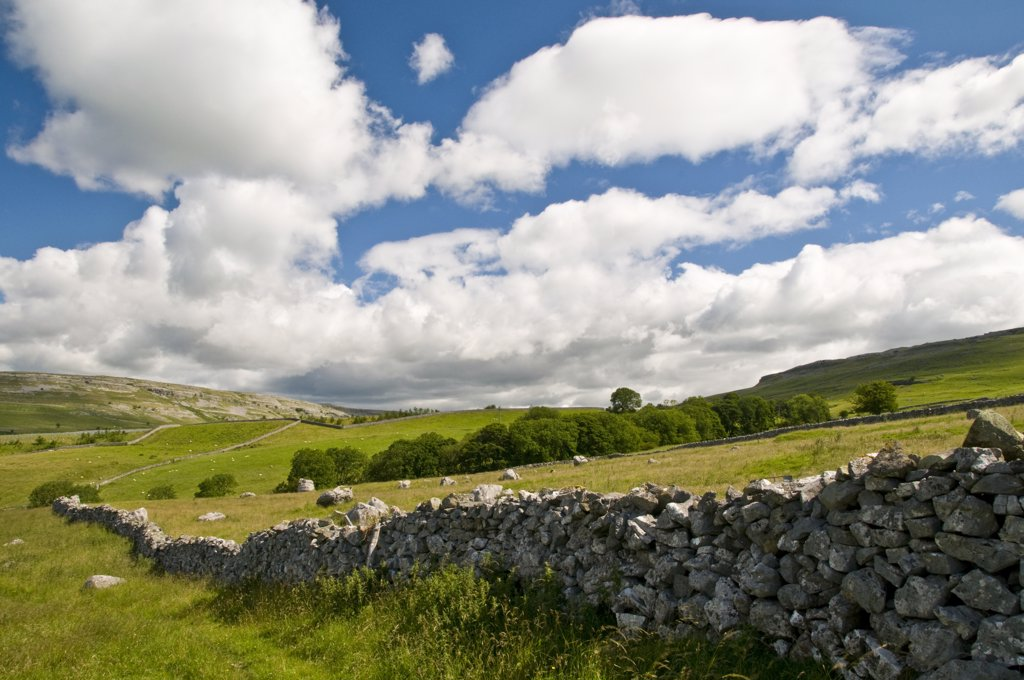 England, North Yorkshire, Ingleton. A traditional drystone wall in the North Yorkshire Dales. : Stock Photo