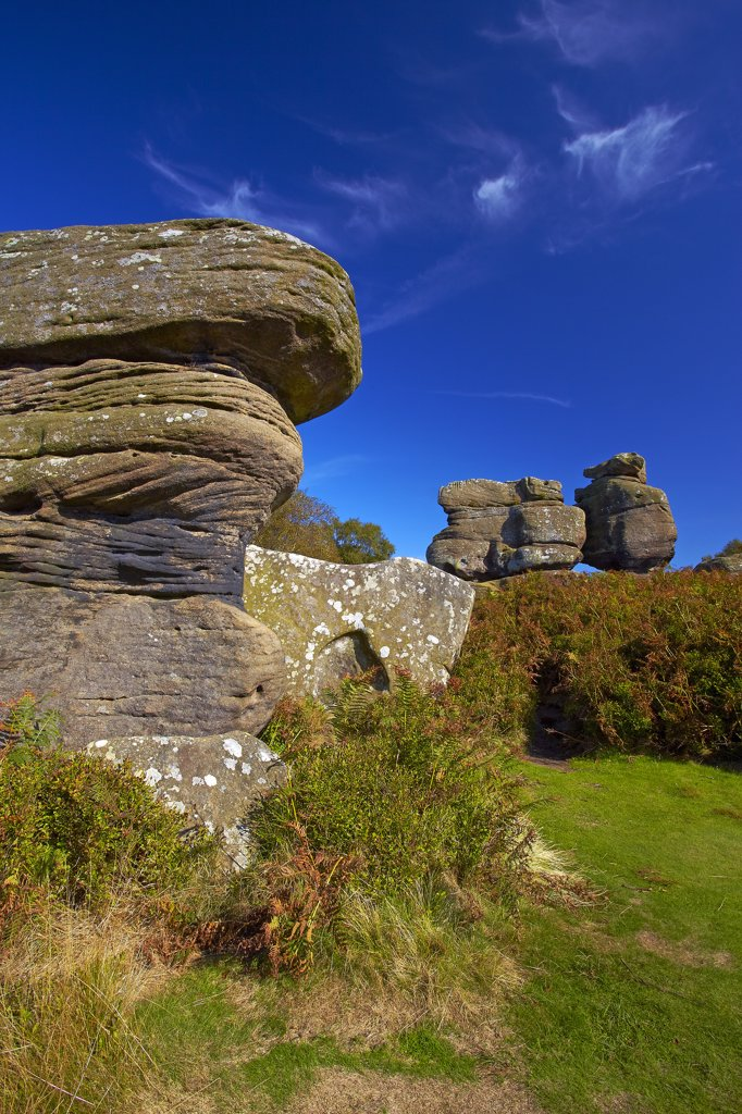 England, North Yorkshire, Brimham Rocks. Baboon Rock at Brimham Rocks on Brimham Moor. The millstone grit rocks have been eroded over the centuries to form interesting and strange shapes. : Stock Photo