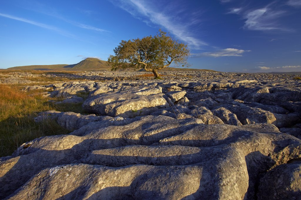 England, North Yorkshire, Ingleton. View of Ingleborough, the second highest mountain in the Yorkshire Dales and one of the Yorkshire Three Peaks, from above Twistleton Scars. : Stock Photo