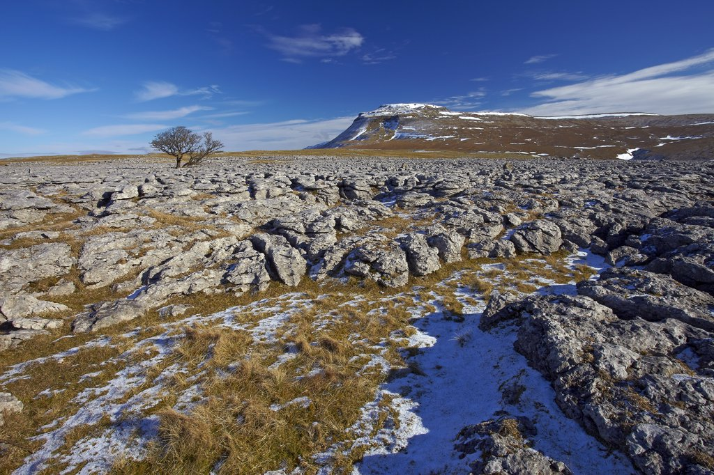 Stock Photo: 4282-8074 England, North Yorkshire, Ingleton. View over the White Scar limestone pavement towards Ingleborough, the second highest mountain in the Yorkshire Dales and one of the Yorkshire Three Peaks.