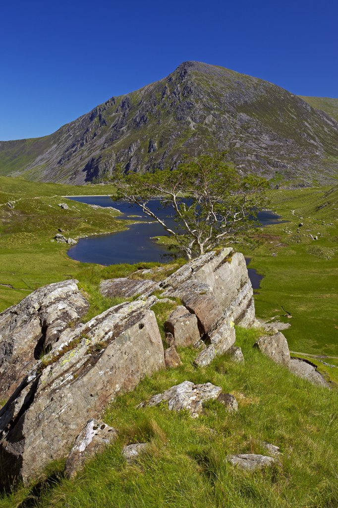 Wales, Gwynedd, Llyn Idwal. View of Pen Yr Ole Wen, the seventh highest mountain in Snowdonia and in Wales, from a path above Llyn Idwal in Snowdonia. : Stock Photo