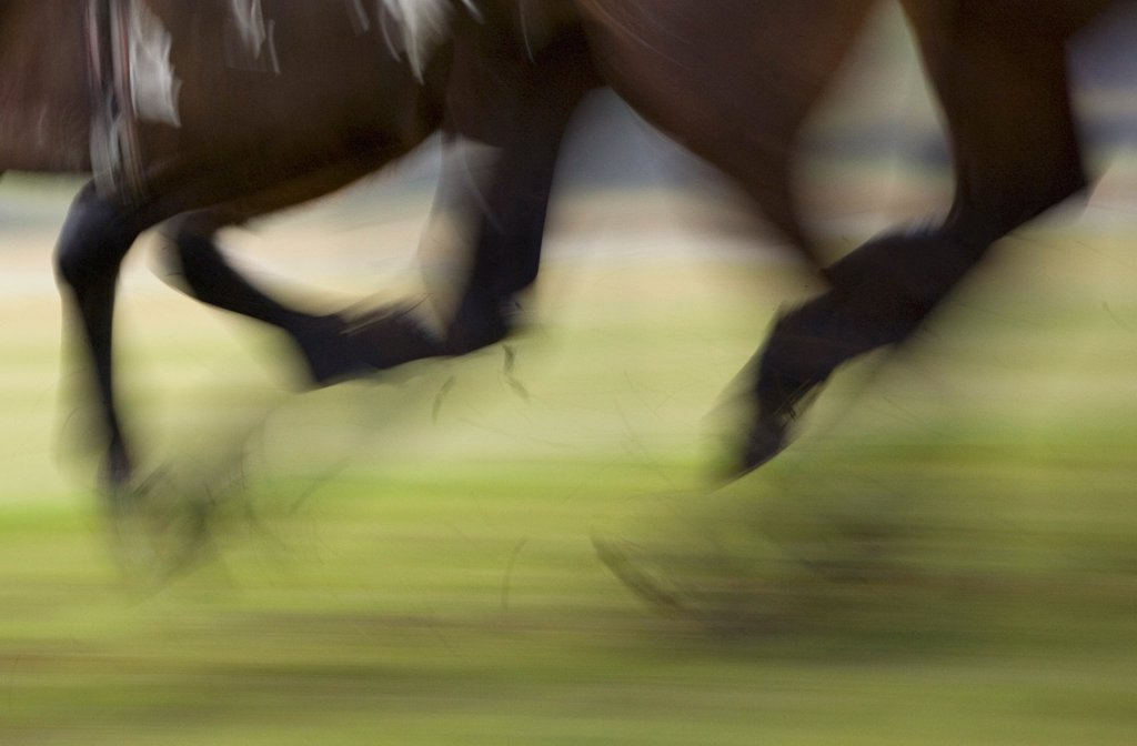 England, Northamptonshire, Towcester. Blurred motion of race horses at full gallop. : Stock Photo