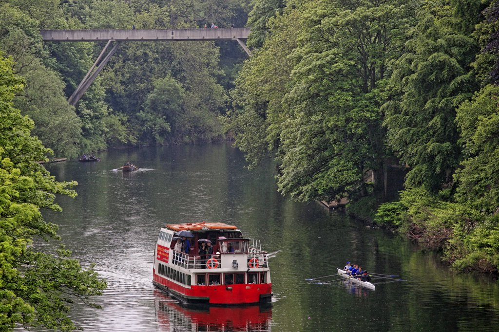 Stock Photo: 4282-9041 England, County Durham, Durham. Prince Bishop River Cruiser and rowers on the River Wear.