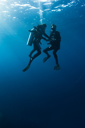 Stock Photo: 4284-1174 Underwater view of scuba divers, Similan National Reserve, Richelieu Rock, Andaman Sea, Thailand