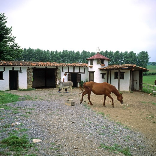 Stock Photo: 4285-10342 HORSE AND DONKEY STABLE  BASQUE COUNTRY FRANCE