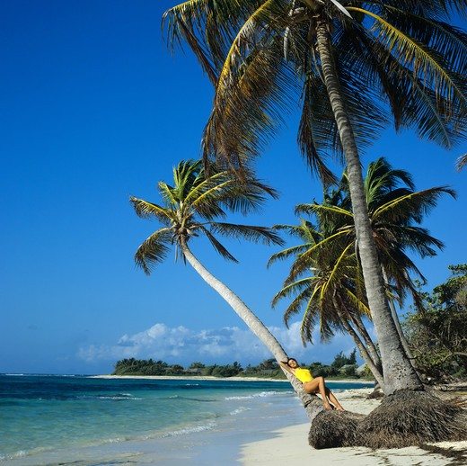 Stock Photo: 4285-10606 MR YOUNG WOMAN IN YELLOW SWIMSUIT LYING AGAINST PALM TREE ON THE BEACH SEA GUADELOUPE FRENCH WEST INDIES