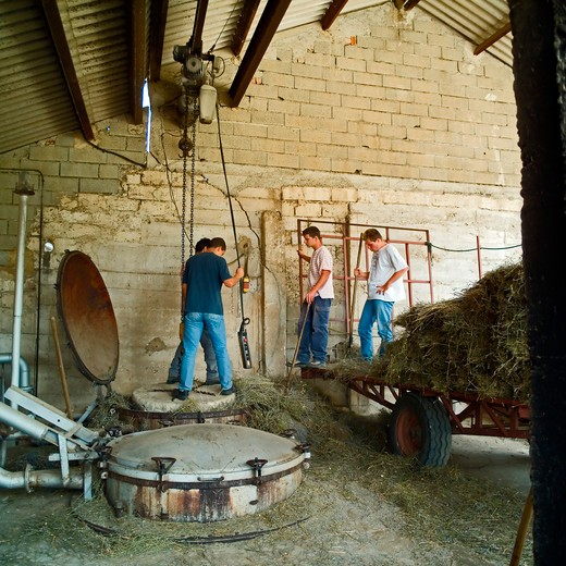 Stock Photo: 4285-11248 men closing the boiler with a stone lid at distillerie du vallon lavender oil distillery provence france