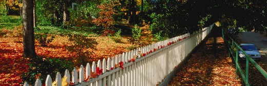 Stock Photo: 4285-1233 Fence and elevated boardwalk, Nevada City, CA