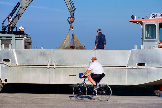 cyclist and amphibian truck unloading mussel gathering brittany france : Stock Photo