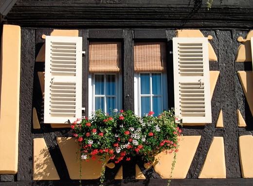 window of yellow half-timbered house with geranium flowers quai de la poissonnerie in tanner's district colmar alsace france : Stock Photo