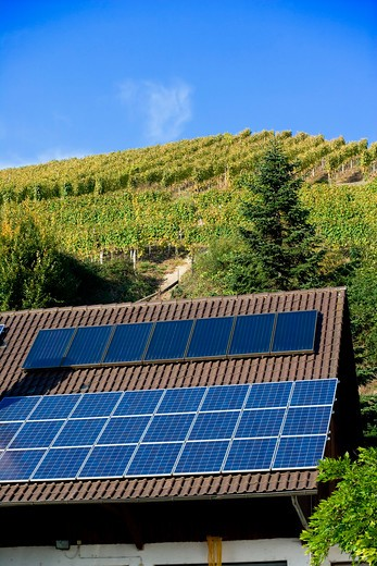 Stock Photo: 4285-13409 winery building with solar panel roofing and vineyard durbach baden-wrttemberg germany