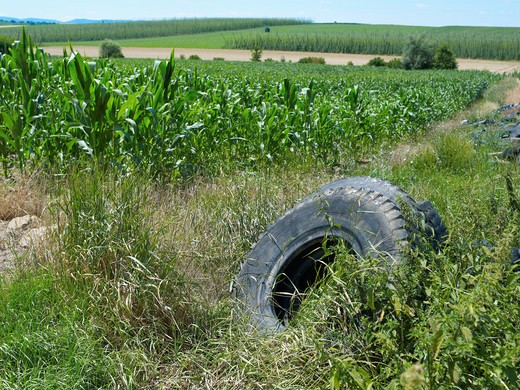 Stock Photo: 4285-14011 OLD CAR TIRE DUMPED ON FARMLAND ALSACE FRANCE