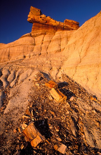 Evening light on pedistal log in the Blue Mesa area, Petrified Forest National Park, Arizona : Stock Photo
