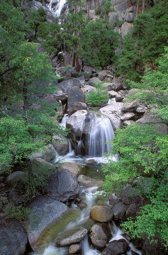 Stock Photo: 4285-1555 Cascade Creek, Yosemite Valley, Yosemite National Park (World Heritage Site), California