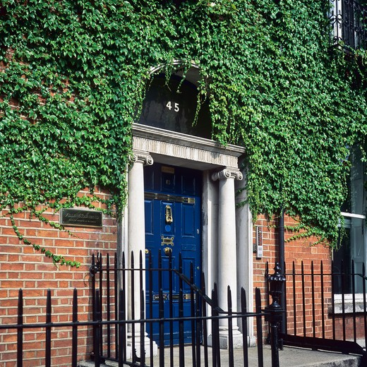Stock Photo: 4285-15756 GEORGIAN IVY-COVERED HOUSE WITH BLUE FRONT DOOR DUBLIN IRELAND