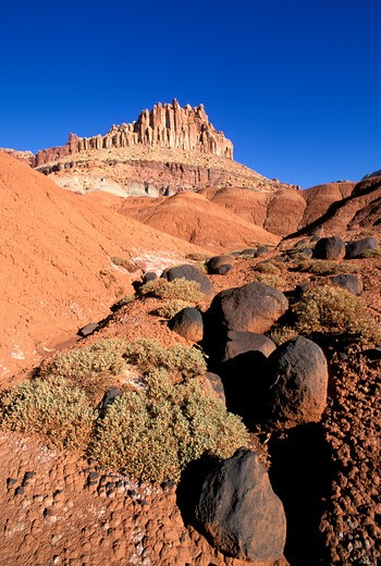 Stock Photo: 4285-1621 Morning light on volcanic boulders and sagebrush under The Castle, Waterpocket Fold near Fruita, Capitol Reef National Park, Utah