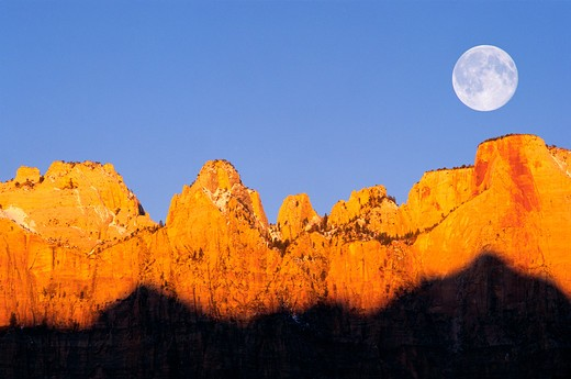 Stock Photo: 4285-1720 Full moon and winter dawn on the Towers of the Virgin, Zion National Park, Utah