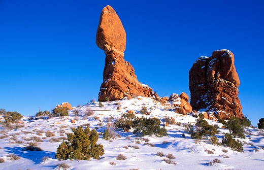 Afternoon light on juniper under Balanced Rock in winter, Arches National Park, Utah : Stock Photo