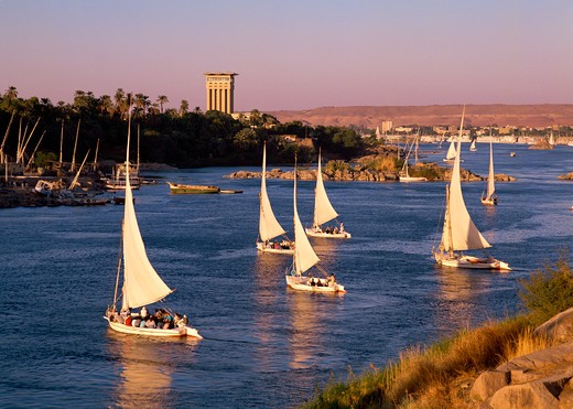 Stock Photo: 4285-19013 Egypt, Aswan, Nile River, Elephantine Island, Feluccas, Sailing