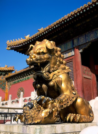 Stock Photo: 4285-21413 Beijing, Forbidden City, Golden Lion