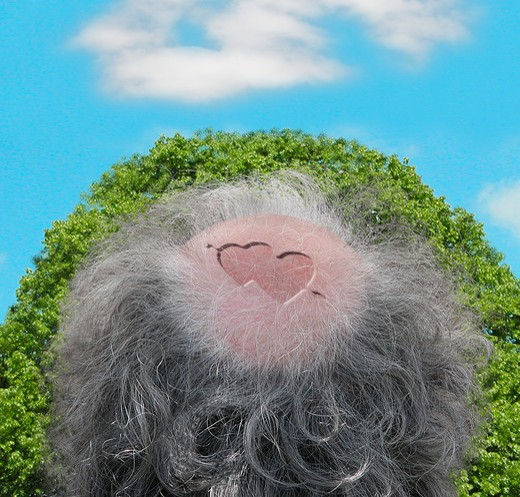 Conceptual image of a  man?s bald head with two hearts on it surrounded by foliage and clouds. : Stock Photo
