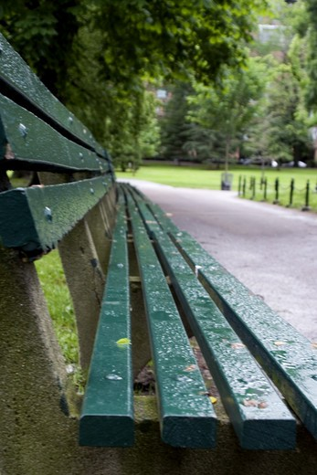 Bench in Boston Public Garden on a rainy summer afternoon. : Stock Photo
