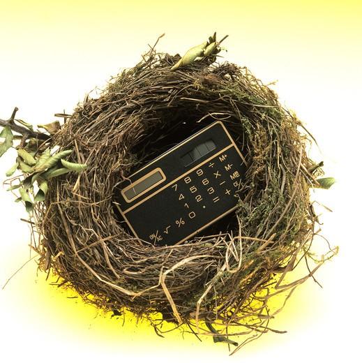 Stock Photo: 4285-5952 CALCULATOR IN A BIRD'S NEST.