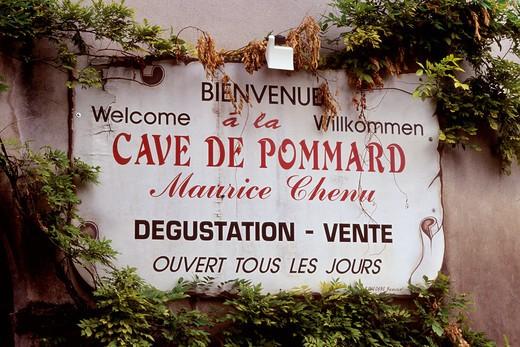 Stock Photo: 4285-6760 FRANCE BOURGOGNE POMMARD  VILLAGE WINE CELLAR AND TASTING SIGN