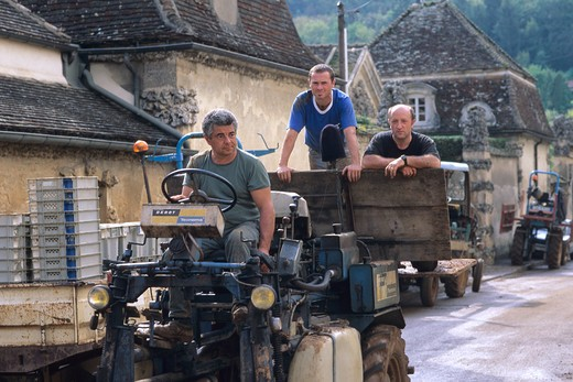 Stock Photo: 4285-6833 FRANCE BOURGOGNE SAVIGNY-LES-BEAUNE GRAPE-PICKERS ON A TRACTOR